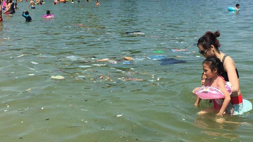 hong-kong-trash-swim